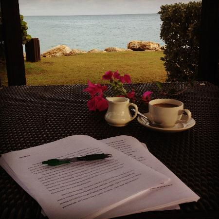 Blue Waters Antigua: Every morning, I sat in the gazebo and wrote poetry.
