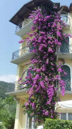 Hotel Galeazzi: Outside