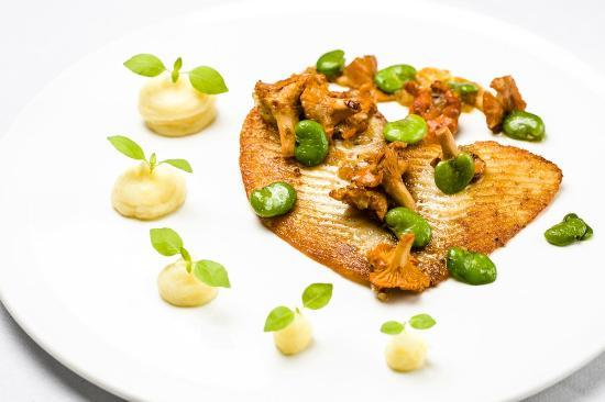 Screaming Eagle: Pan fried brill fillet served with mashed potato, broad beans and chanterelle dressing