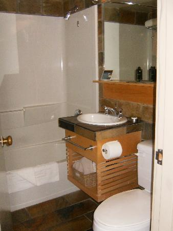 The Juniper Hotel: small bathroom with slate countertops and floor