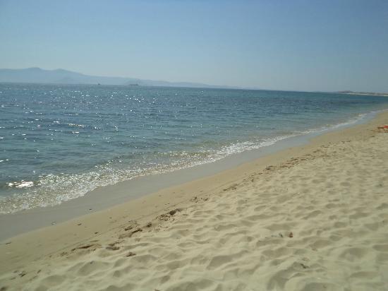 Helios Beach Studios: Beach area