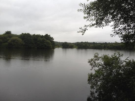 Wyreside Lakes Fishery : Wyre Lake home of big carp!