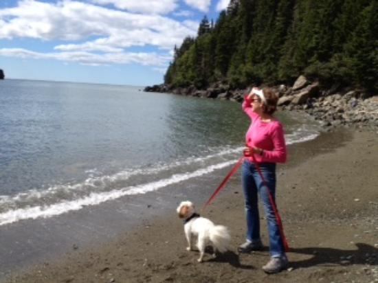 Fundy National Park: Point Wolf Beach at Funday National Park