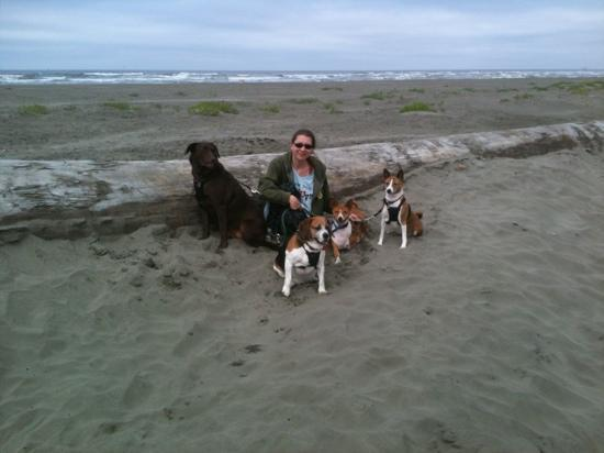 Moonstone Beach Motel: Mel,Ringo,Snoozies,& Georgie Johnson w/their mama (KT)