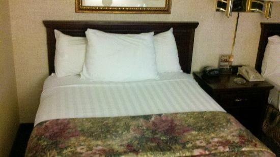 Drury Inn & Suites Greensboro: beds were dressed nice, but lumpy. Need updating.