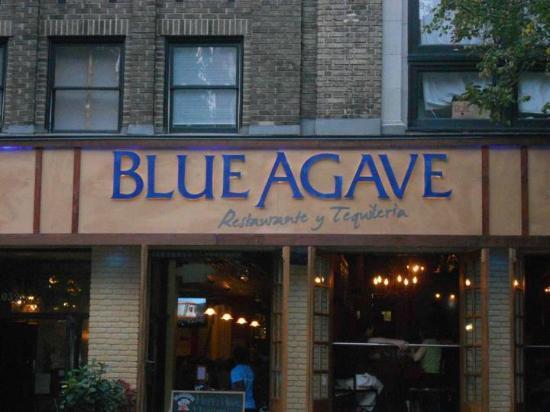 Blue Agave Restaurante Y Tequileria Baltimore Federal Hill Menu Prices Restaurant Reviews Tripadvisor