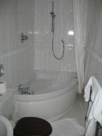 Lanteglos Country House Hotel: Compact Bathroom  (room9)