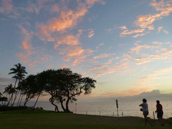 Maui Coast Hotel: Across the street