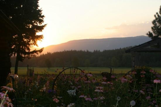 Cedar Mountain Farm Bed and Breakfast
