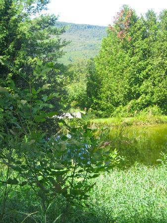 Pretty River Valley Country Inn: The pond