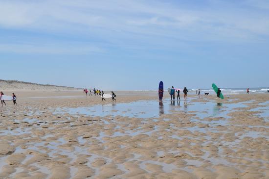 Camping de la Cote d'Argent: beach