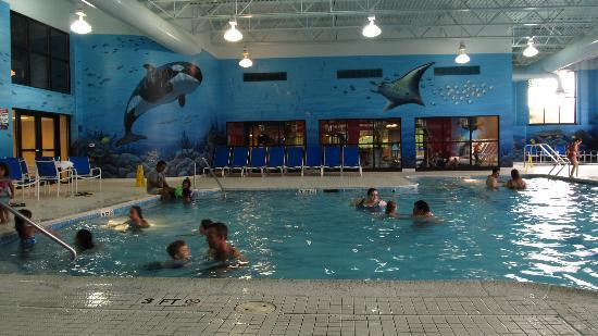 DoubleTree Resort by Hilton Hotel Lancaster: large indoor pool