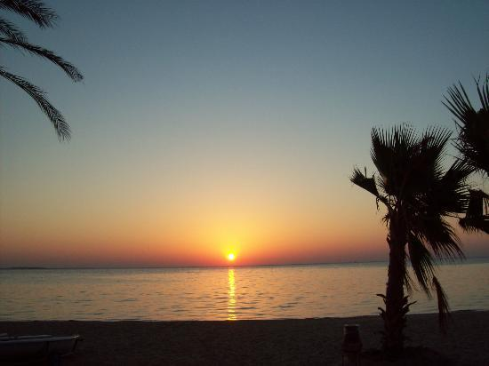 Baie de Soma, Égypte : Sunrise viewed from the hotel beach