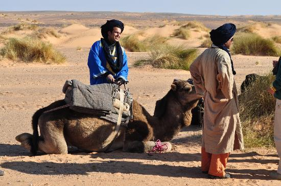 Le Chevalier Solitaire: guide berbere