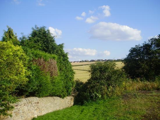 Low Urpeth Farm B&B: Lovely view from back of cottage