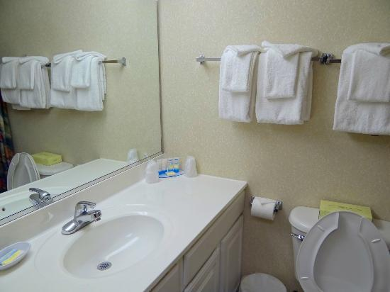 Carousel Resort Hotel & Condominiums: Bathroom
