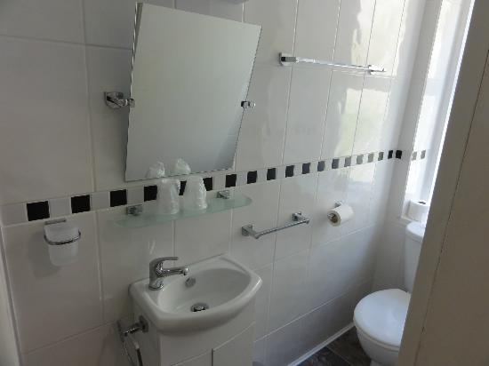 The Edelweiss Guest House: En suite shower room