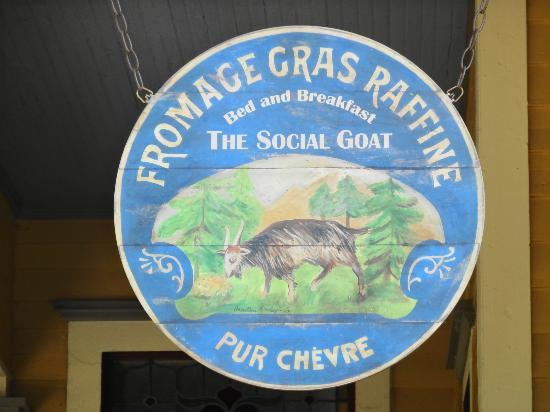 The Social Goat Bed & Breakfast: The Social Goat sign