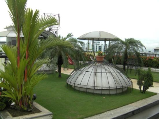 "The Mercy: Opportunity to ""chill"" in roof top garden area"