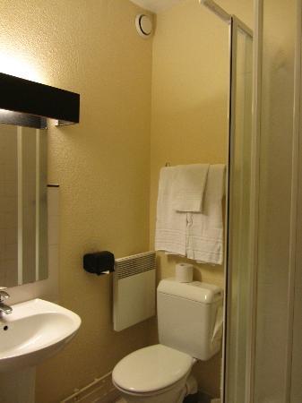 Elysee Hotel: Compact bathroom