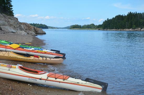 Seascape Kayak Tours Inc.: Picnicking spot
