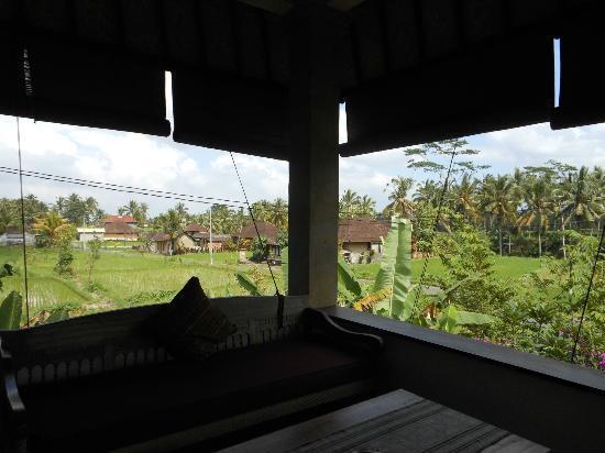 Villa Ibu : terrazzo