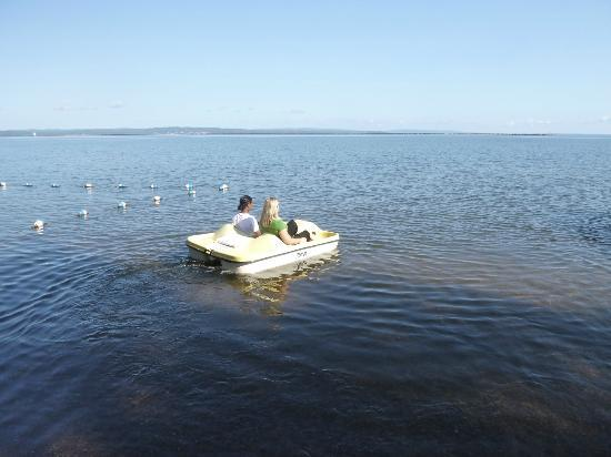 AmericInn Ashland : pedal boats- there are 2 for 2 people each