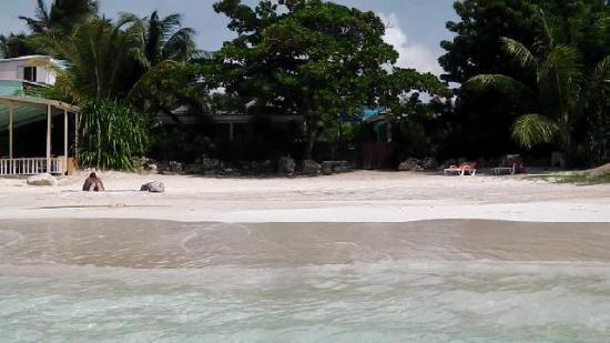 بوكانير بيتش كلوب: Vista dal mare 