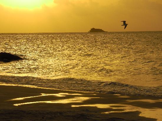 Buccaneer Beach Club: Tramonti ad ogni sera...