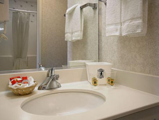Super 8 Rochester: Bathroom