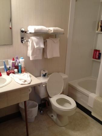 Acadian Motel: bathroom