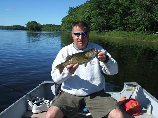 Penobscot river cabins smallmouth bass fishing picture for Smallmouth river fishing