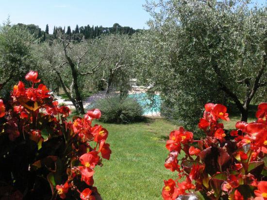 LE OCHE GRIGIE Hotel (Cortona): Prezzi 2019 e recensioni