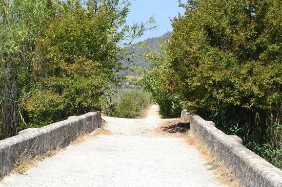 Parque natural s'Albufera de Mallorca: Parque Natural de la Albufera