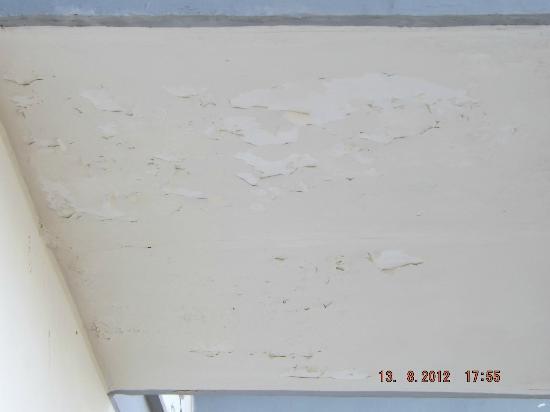 هوتل جاكارينو: walls around our balcony