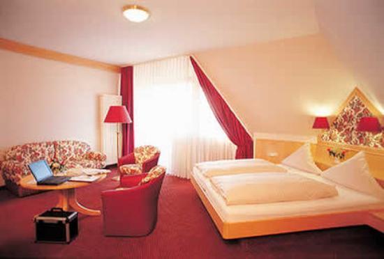 Hotel Windenreuter Hof: Room View