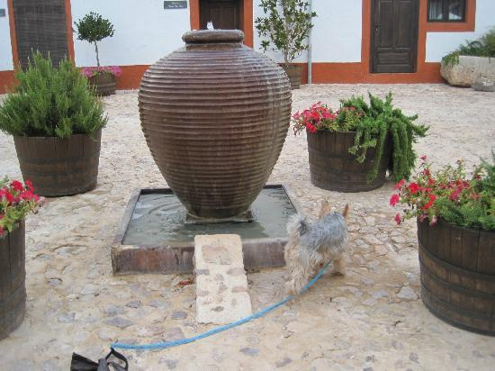 Cortijo Sierra la Solana 1878: Pet friendly as we had our small dog with us!