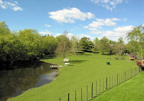 Mokoia Downs Estate B&B: Paddock and lake at Mokoia Downs