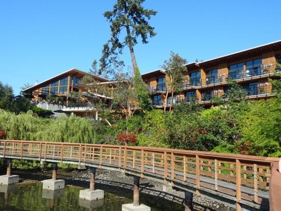 Brentwood Bay Resort & Spa: The Resort