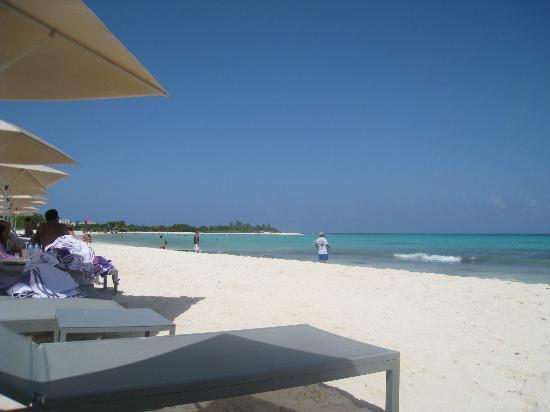 Beach Picture Of Paradisus Playa Del Carmen La Esmeralda Playa Del Carmen Tripadvisor