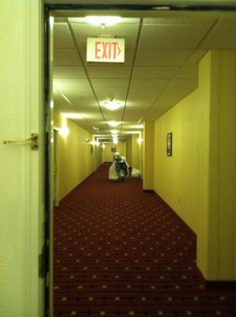 Residence Inn Hartford Downtown: Hallway Outside of Room... Dark and Scary