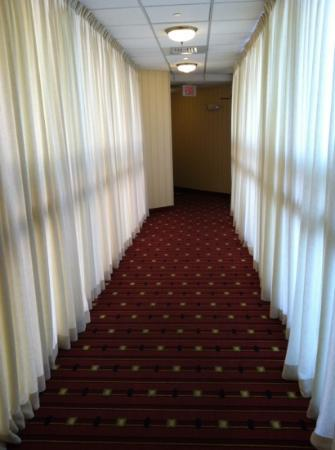 Residence Inn Hartford Downtown: Hallway Leading to Room... Very Odd.