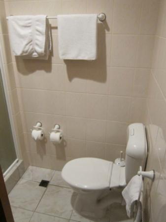 SilverOaks Hotel Geyserland: トイレの様子