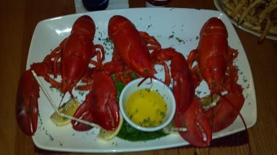 Red Jacket Seafood Restaurant & Lounge: Great Lobster