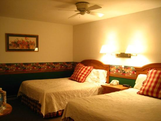 Main Street Motel: room detail