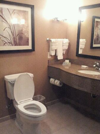 Hilton Garden Inn DFW North Grapevine: bathroom