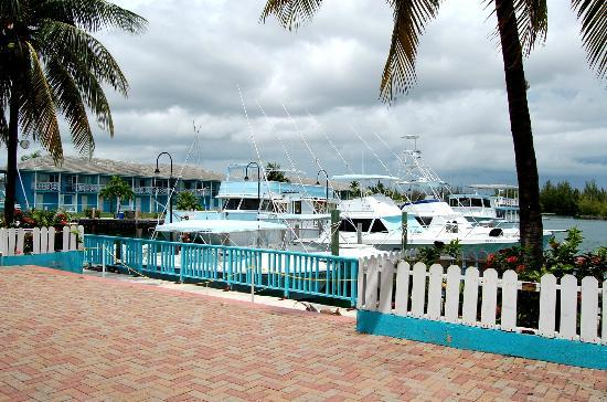Freeport casino cruises 16