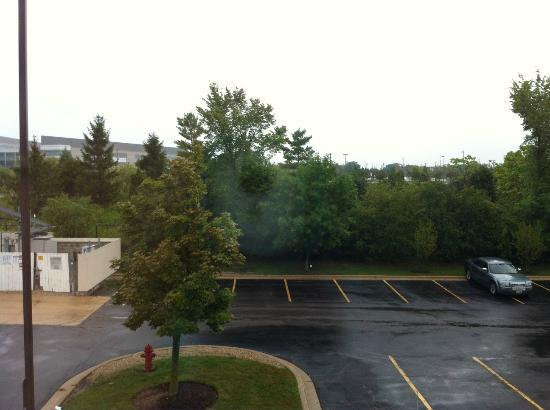 Holiday Inn Express Hotel & Suites Chicago-Deerfield/Lincolnshire: View of the forest preserve outside my window