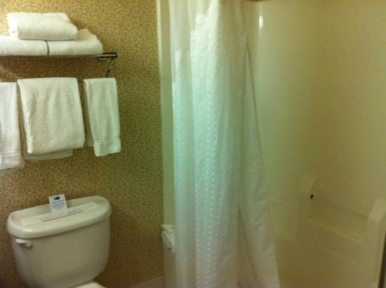 Holiday Inn Express Hotel & Suites Chicago-Deerfield/Lincolnshire : view from bathroom door