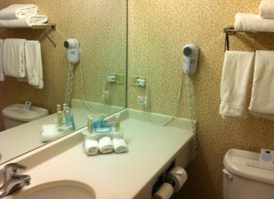 Holiday Inn Express Hotel & Suites Chicago-Deerfield/Lincolnshire: Bathroom counter
